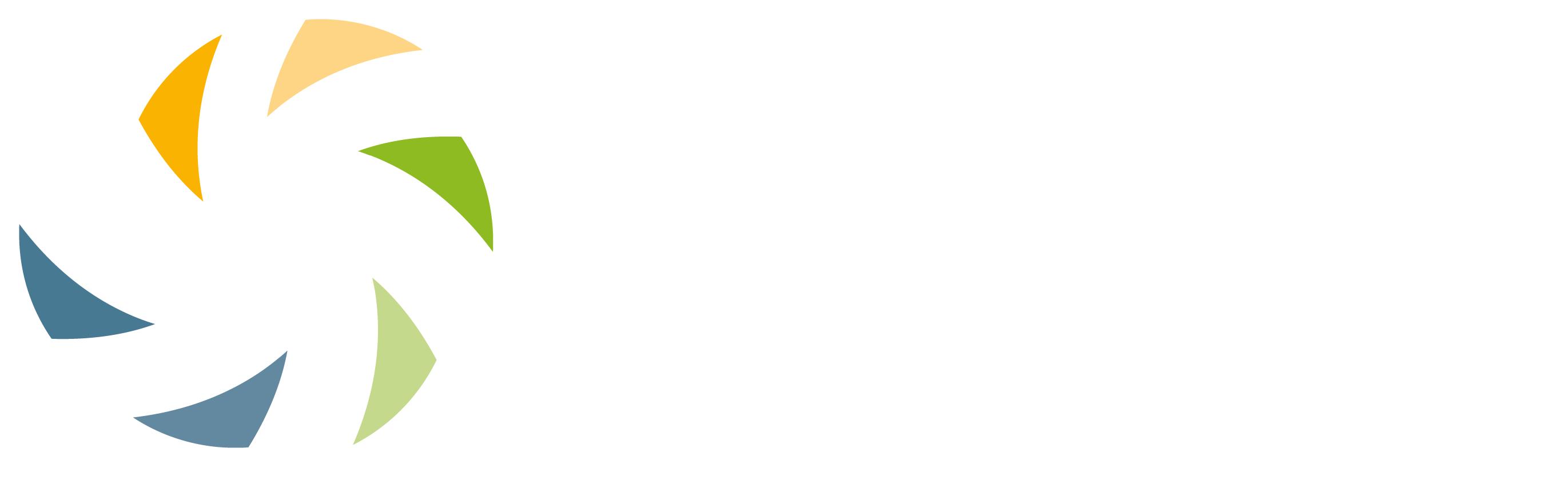 C-SEB Logo