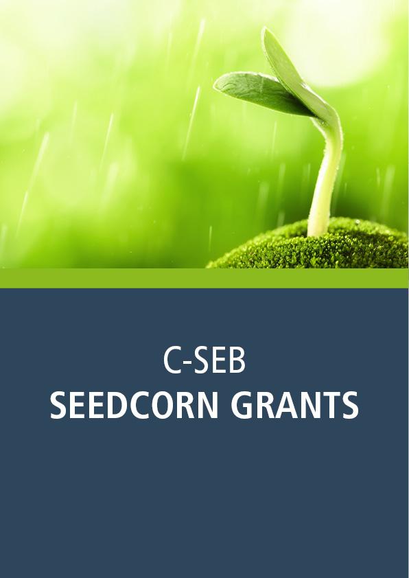 Seedcorn Grant
